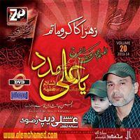 200_am_ali deep rizvi nohay 2014