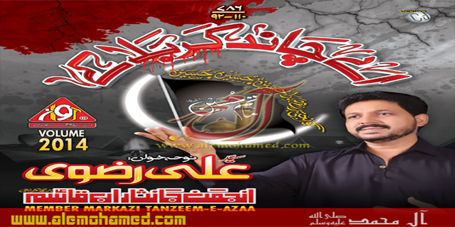 Ali Rizvi 2013-14