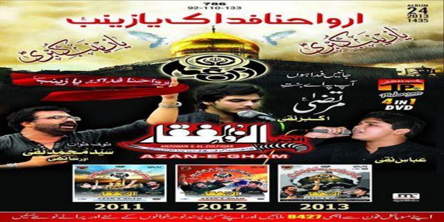 Al Zufiqar 2013-14