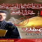 am_ali safdar noha 2014