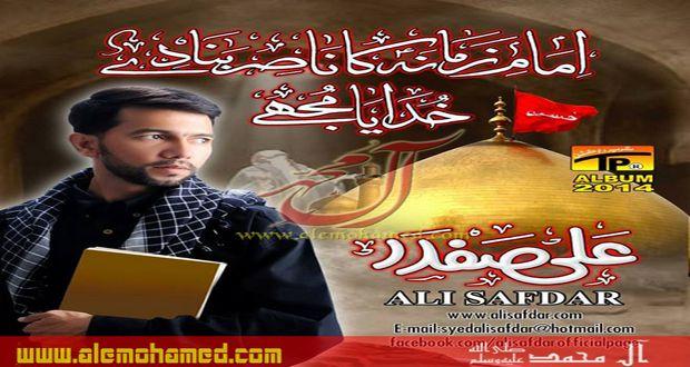 Ali Safdar 2013-14