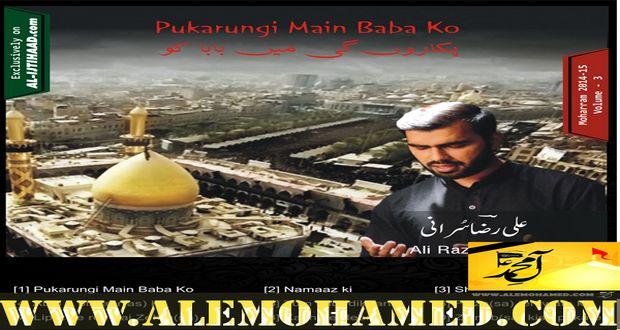 Ali Raza Surani 2014-15
