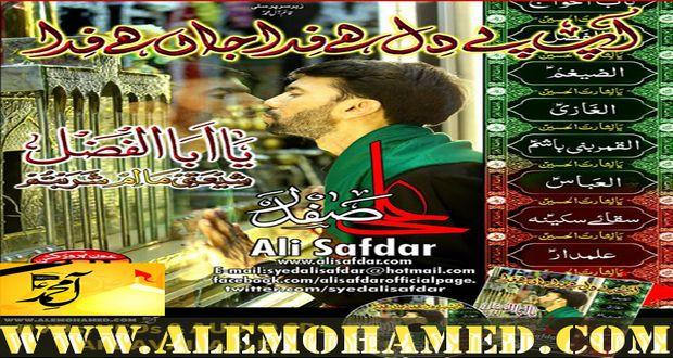 Ali Safdar 2015
