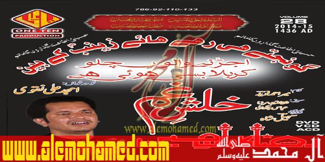 Amjad Naqvi 2015