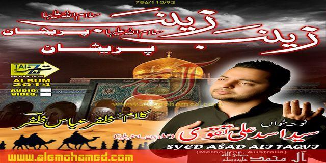 Asad Taqvi 2013-14
