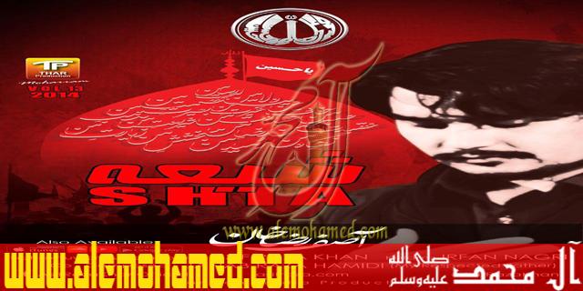 Asif Raza 2015