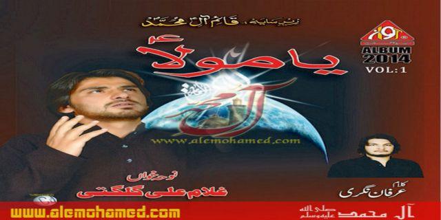 Ghulum Ali 2013-14