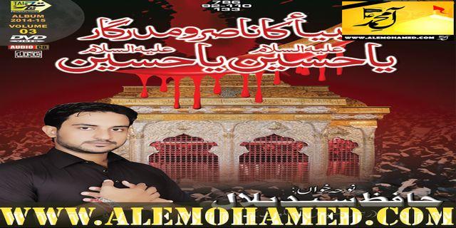Hafiz Syed Bilal 2015