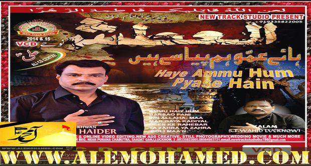 Kafeel Haider 2015