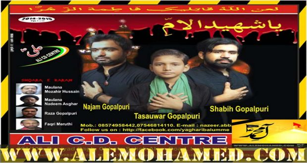 Shabih Gopalpuri 2014-15