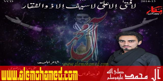 Muhammad Raza Ali 2015