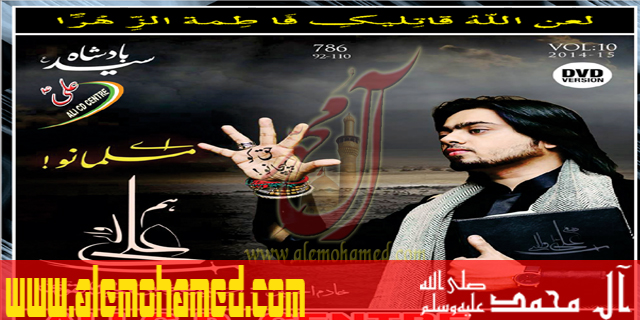 Mujtaba Haider 2015