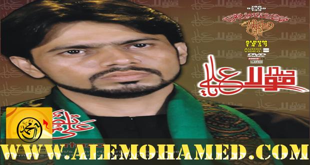 Ali Murtaza Nohay 2015-16