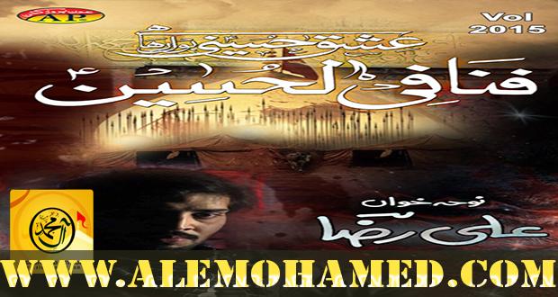 Ali Raza Nohay 2015-16