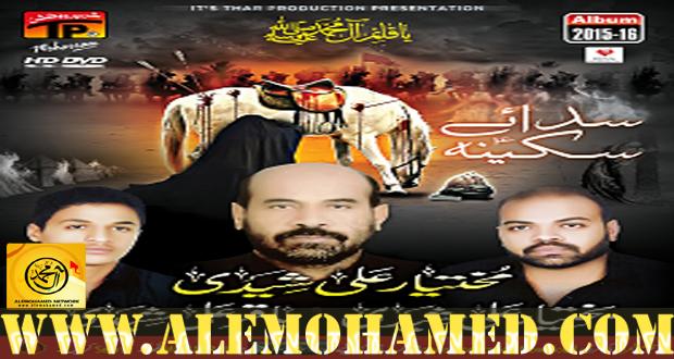 Baqtawar Ali & Baqar Ali Shaheedi Nohay 2015-16