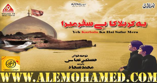Hasnain Abbas Nohay 2015-16
