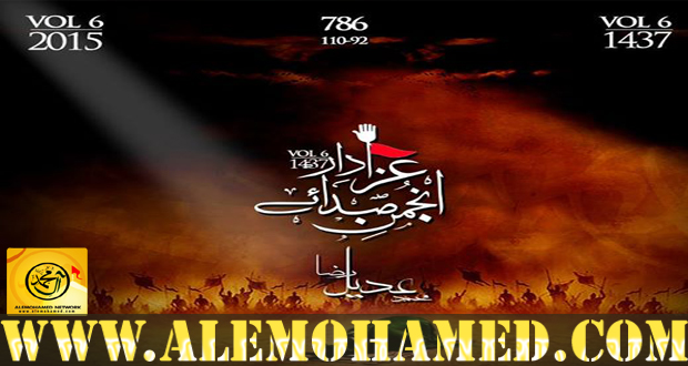 Muhammad Adeel Raza Nohay 2015-16