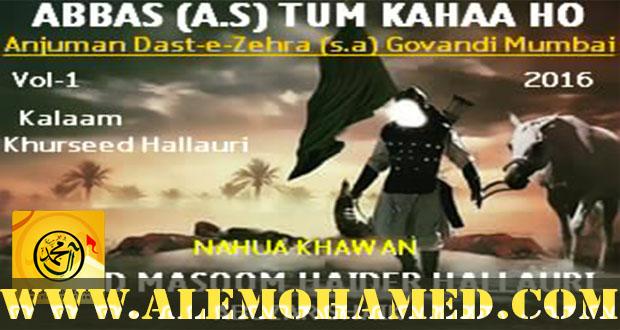 Sayed Masoom Haider Hallauri Nohay 2015-16