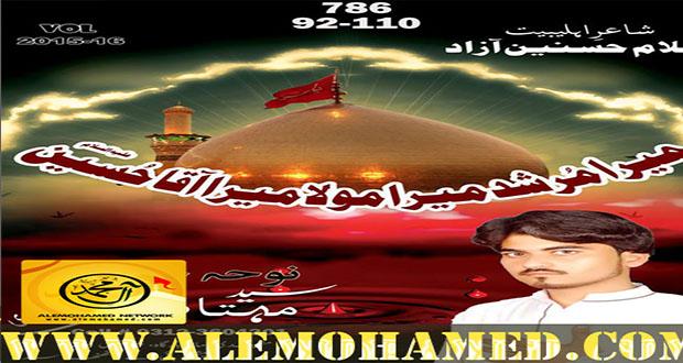 Sayyed Mehtab Ali 2015-16
