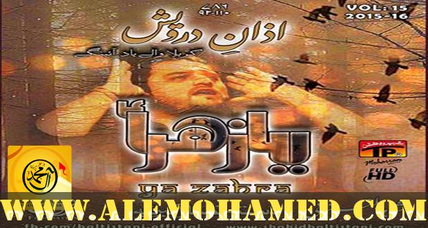Shahid Baltistani Nohay 2015-16