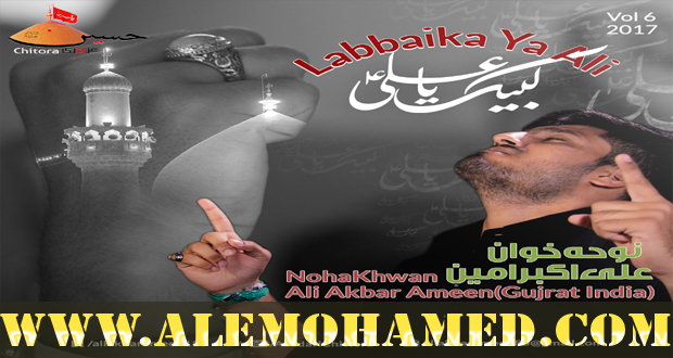 Ali Akbar Ameen Nohay 2016-17