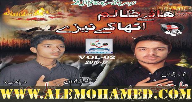 Ali Hasnain Jawed & Ali Shah Nohay 2016-17