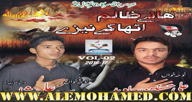 AM_Ali Hasnain Jawed Nohay 2016-17