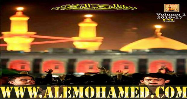 Ali Hyder Shah Rizvi Nohay 2016-17