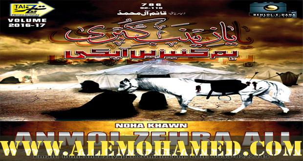 Anmol Zehra Ali Nohay 2016-17