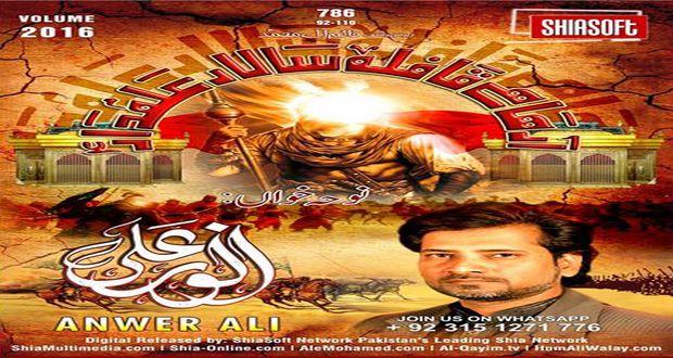 Anwer Ali Nohay 2016-17