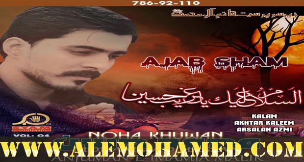 Muhammad Hasan Nohay 2016-17