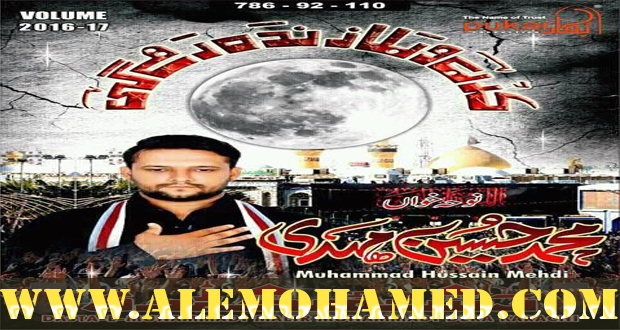 Muhammad Hussain Nohay 2016-17