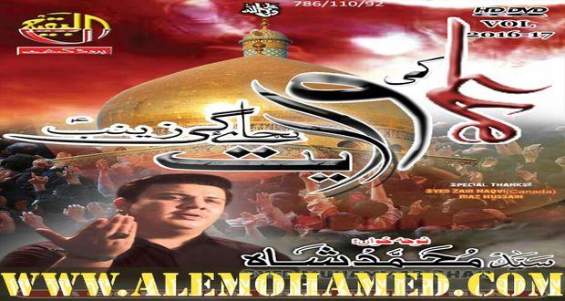 Muhammad Shah Nohay 2016-17