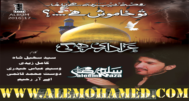 Saleem Raza Nohay 2016-17
