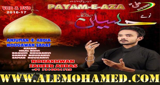 Zaheer Abbas Nohay 2016-17