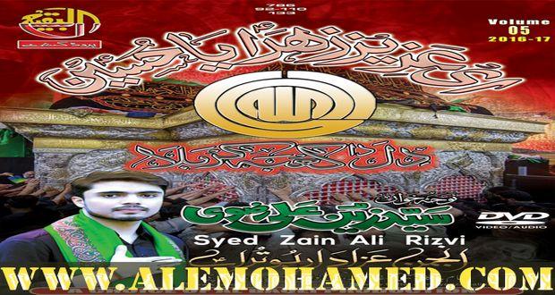 Zain Ali Rizvi Nohay 2016-17