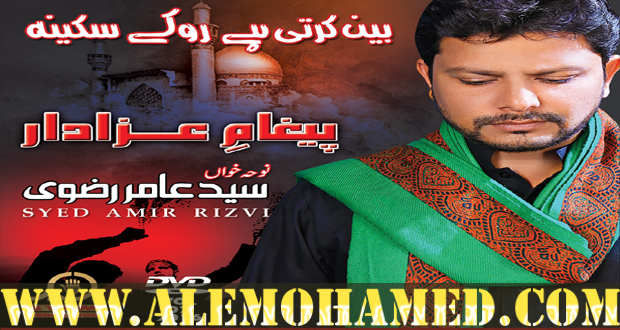 Amir Rizvi Nohay 2016-17