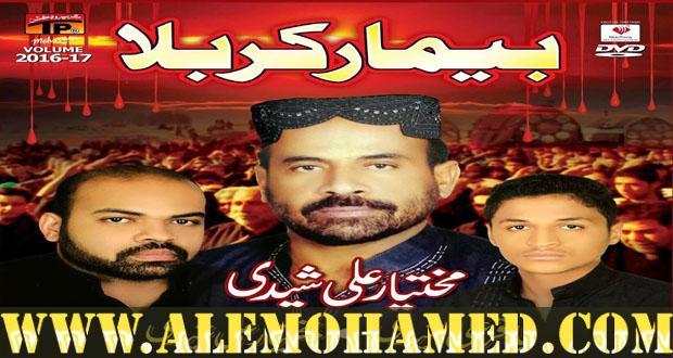 Baqtawar Ali & Baqar Ali Shaheedi Nohay 2016-17
