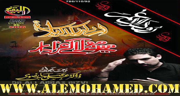 Dr Ali Abbas Nohay 2016-17