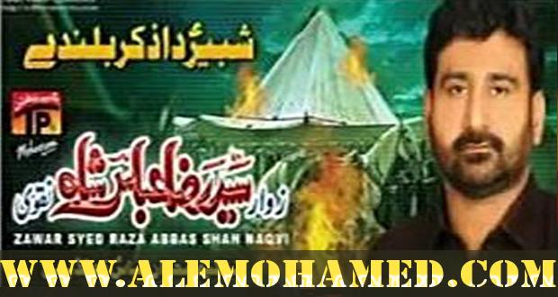 Raza abbas shah nohay 2013
