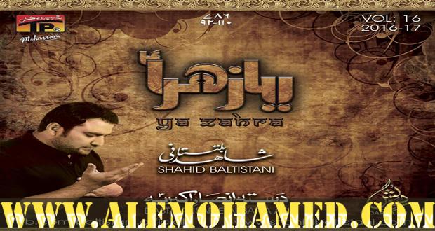 Shahid Baltistani Nohay 2016-17