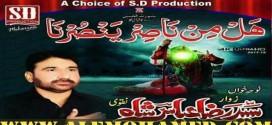 Raza Abbas Shah Nohay 2017-18
