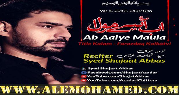 Syed Shujat Abbas Nohay 2017-18