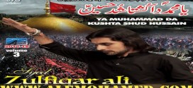 Zulfiqar Sherazi Nohay 2017-18