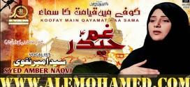 Ambar Naqvi Ayyam-e-Ali Noha 2018-19
