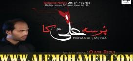 Own Rizvi Ayyam-e-Ali Noha 2018-19