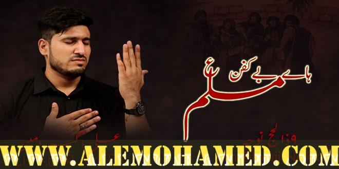 Ali Akbar Ameen Nohay 2018-19