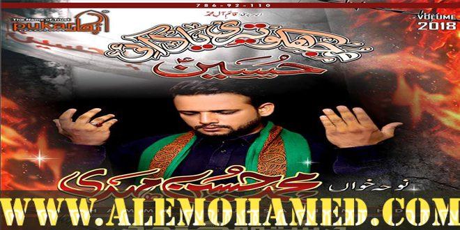 Muhammad Hussain Nohay 2018-19