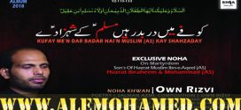 Own Rizvi Nohay 2018-19