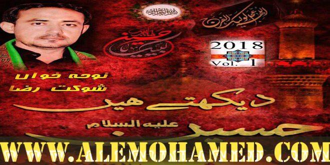 Shoukat Raza Shoukat Nohay 2018-19